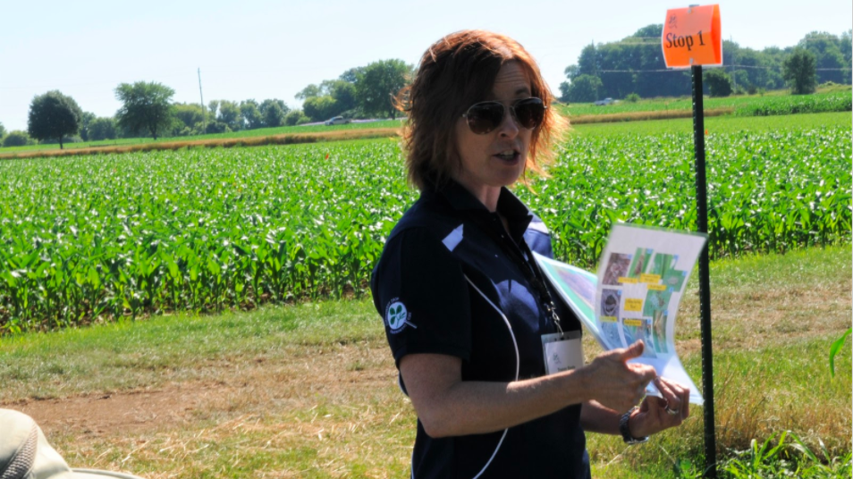 Tracey Baute is an entomologist with the Ontario Ministry of Agriculture, Food and Rural Affairs